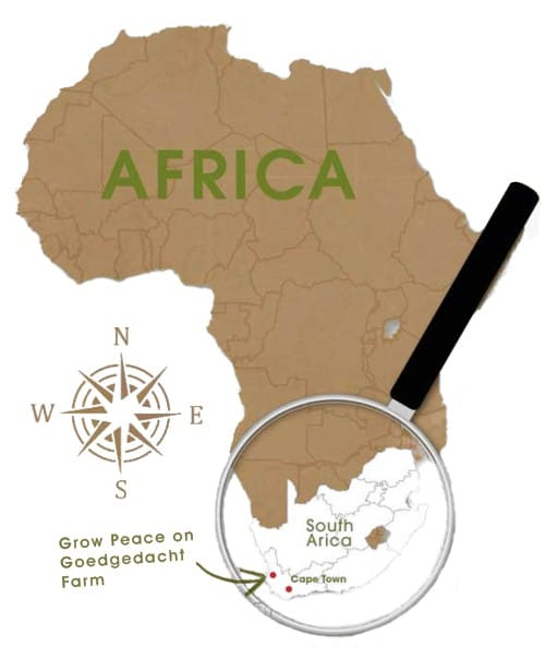 Grow Peace Africa Map